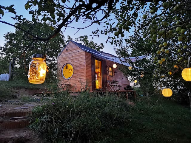 Tiny House on wheels, in an infinite green oasis