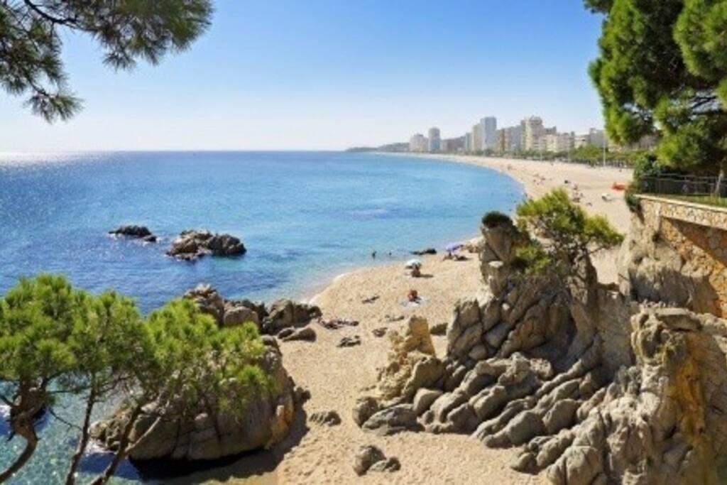 Playa de aro costa brava apartamentos en alquiler en platja d 39 aro ct espa a - Pisos alquiler platja d aro ...
