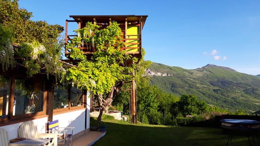 Camera sull'albero con cena e colazione incluse