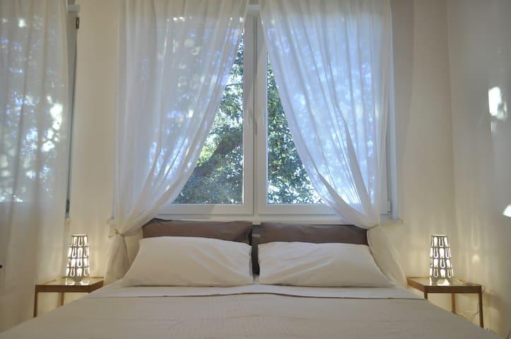 La finestra sull'albero