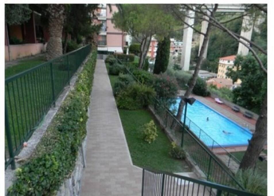 piscina residence