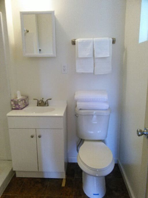 Private full bathroom with toilet, sink, walk in shower.  Clean towels provided.