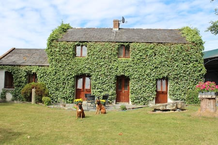 Kilknockan Lodge, Blackabbey Rd, Adare, Limerick