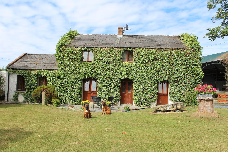 Welcome to Kilknockan Lodge, located close to Ireland's prettiest village, Adare, in County Limerick