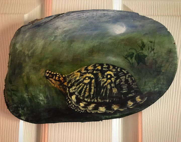The Turtle Room at the Laughing Heart Lodge
