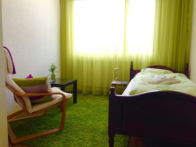 Comfy room with private bath in the city of roses - Rapperswil-Jona - 公寓