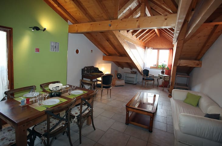 3 bedroom cottage, bright, warm and downtown - Annecy - Leilighet
