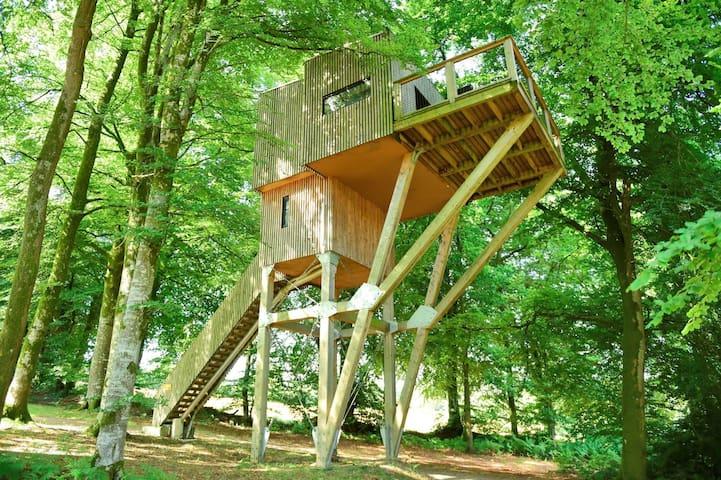 Cabane dans les arbres Normandie Etape en Forêt