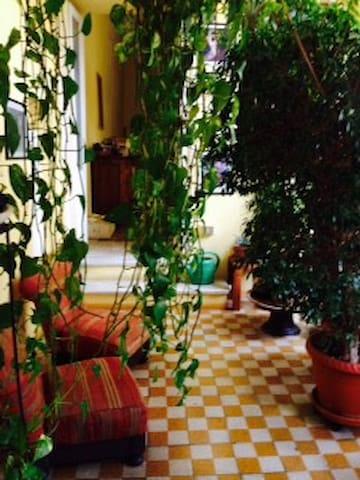 Casa Ibiscus - Piacenza - Appartement