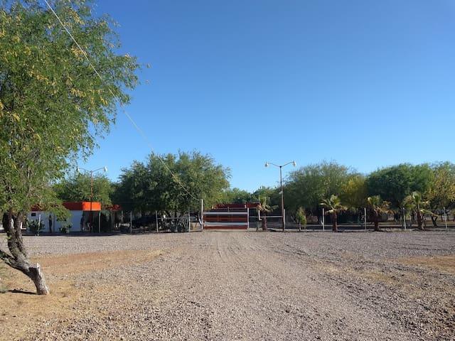 Campo Abierto 3