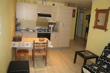 Bel appartement T3. WIFI. En pleine nature - Saint-Paul-sur-Ubaye - Appartement