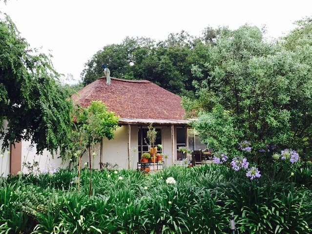 Peaceful cottage on a game farm. - Polokwane - Guesthouse