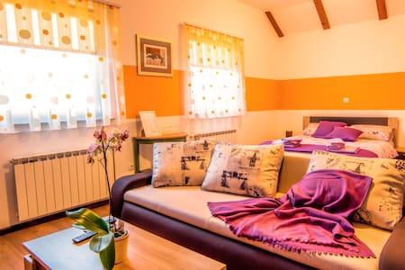 Comfy room near waterfalls - Slunj