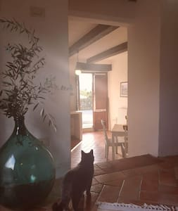 Fantastic Apartment in the Heart of Toscana