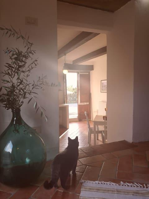 Fantastisk leilighet i hjertet av Toscana