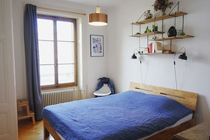 Very nice appartment close to the lake - Genève - Apartment