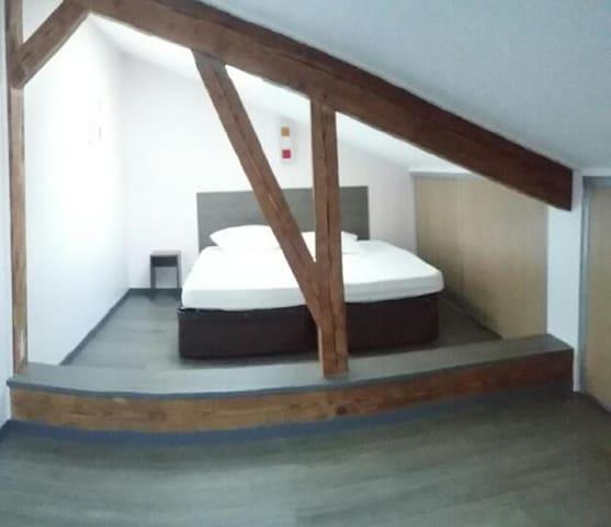 Bel appartement de 3 pièces duplex - Bourg-en-Bresse - Huoneisto