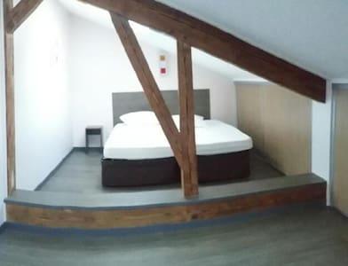 Bel appartement de 3 pièces duplex - Bourg-en-Bresse