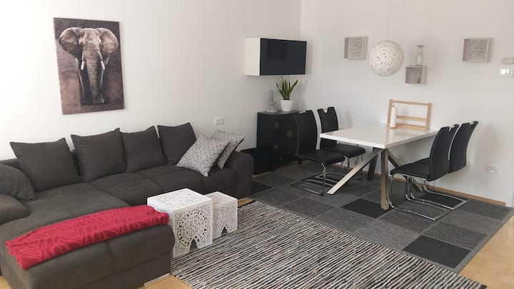 Spacious Apartment Zana in Ljubljana - Trzin