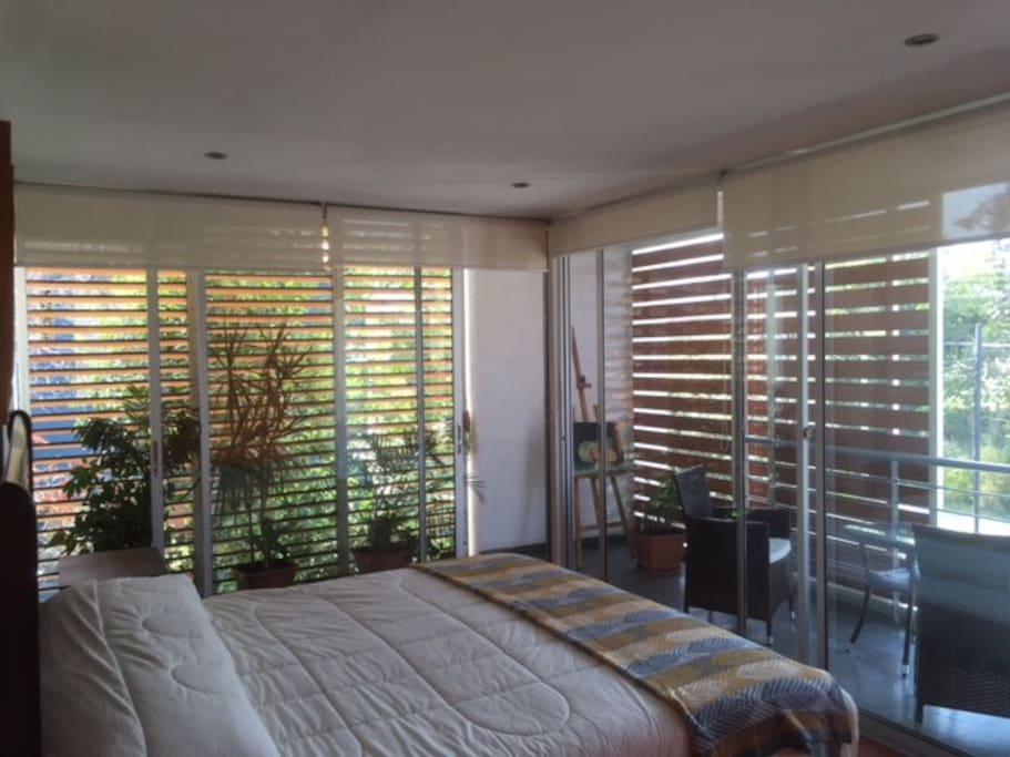Vista 1 Habitación