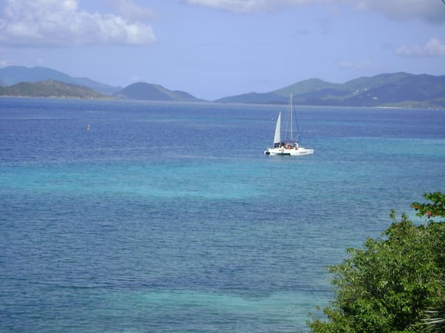 Ocean Front Paradise
