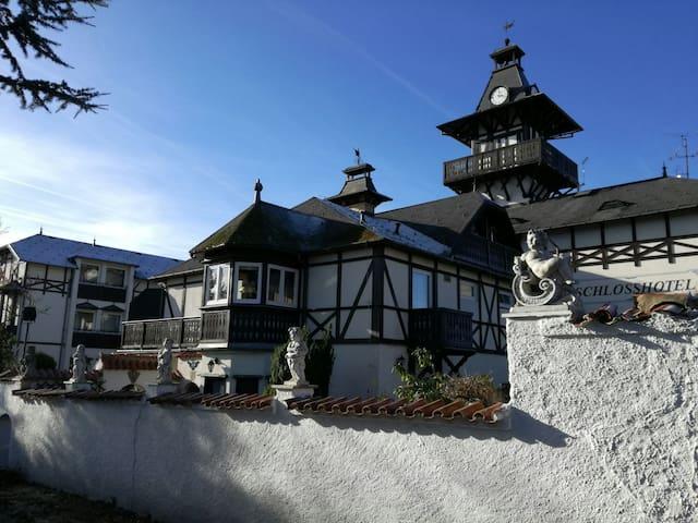 Schlosshotel Marienbad*** - Velká Hleďsebe - Muu