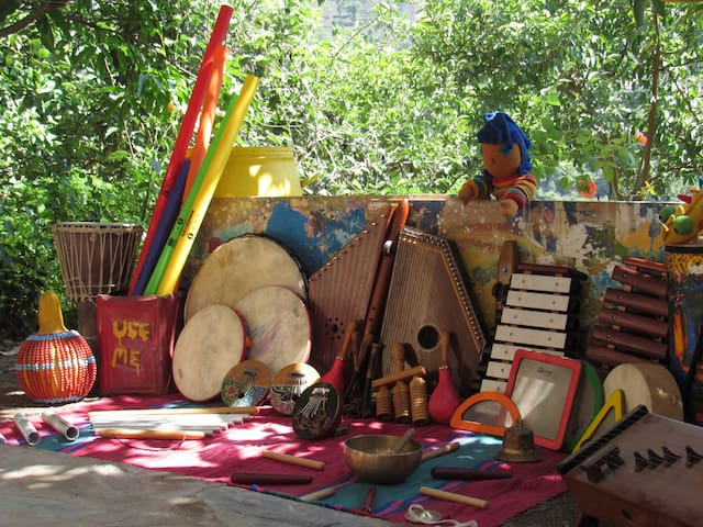 Therapeutic and recreational musical instruments