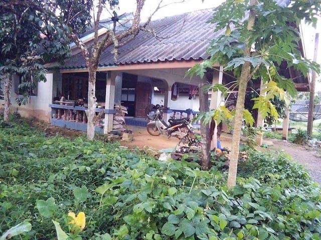 Home Garden - Casa