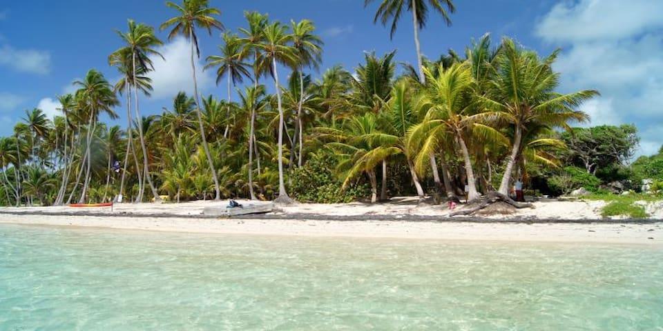 Tous à la plage en Martinique - 3 p C