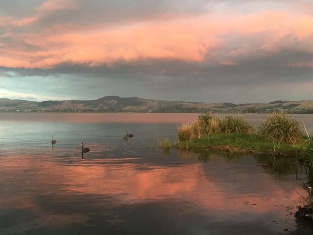 Lakeside Lodge - Rotorua - Inny