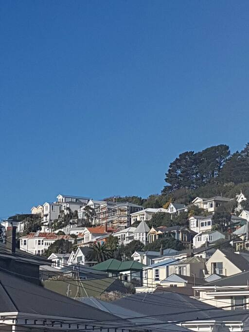 Mt Victoria is adored for the sunshine and  character villas