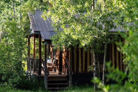 LITTLE BEAR - MODERN CABIN AT CONSTELLATION CREEK