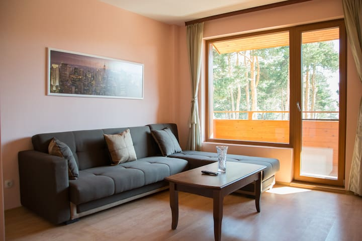 Luxury Apartment with outside pool and 2 balcony's - Velingrad - Wohnung