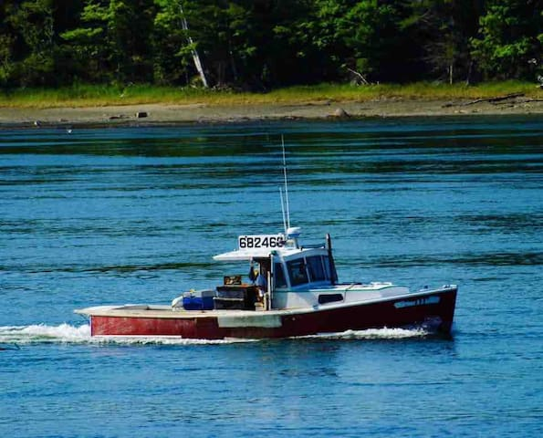 (OCEANFRONT) Taunton Bay Retreat