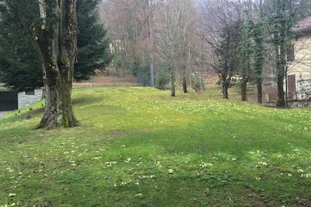 Parco Cambria Natura e Relax - Lanzo D'intelvi - Wikt i opierunek