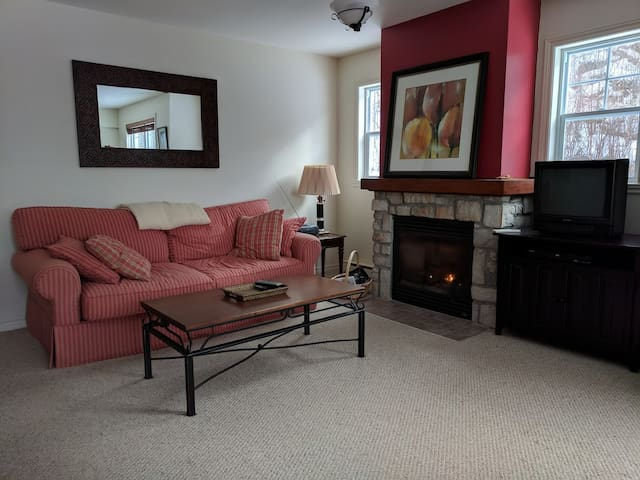 Living Room & Gas Fireplace