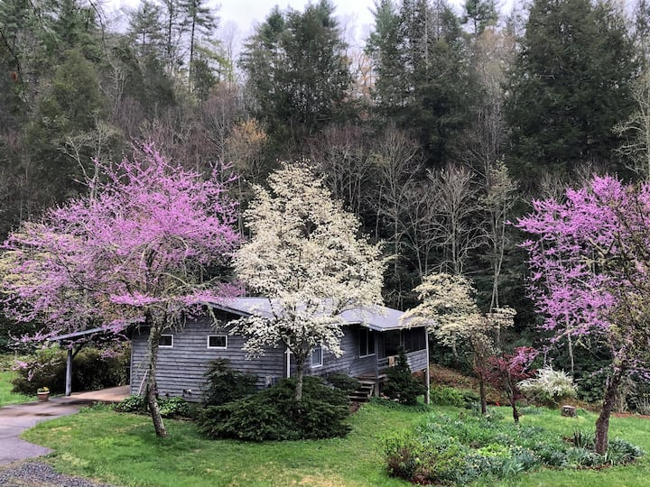 Comfortable cottage near Asheville