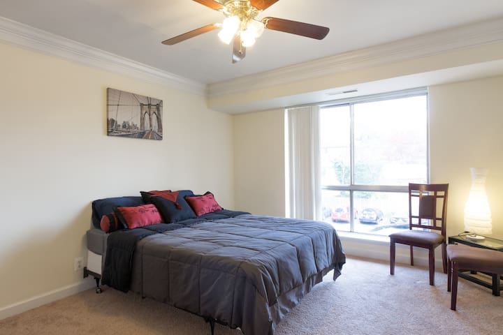 Charming 1 BR APT minutes from D.C
