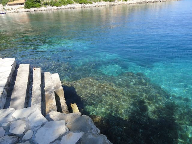 Amazing,peaceful place near sea - Blato - Lejlighed