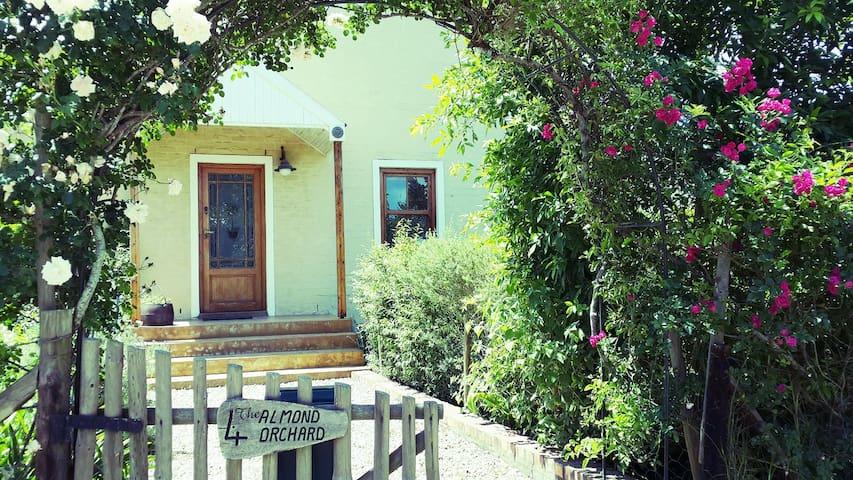Almond Orchard Greyton - Greyton - House