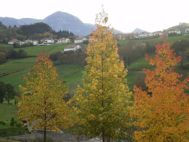 Tranquilo y relajante caserío en Tolosaldea, Altzo