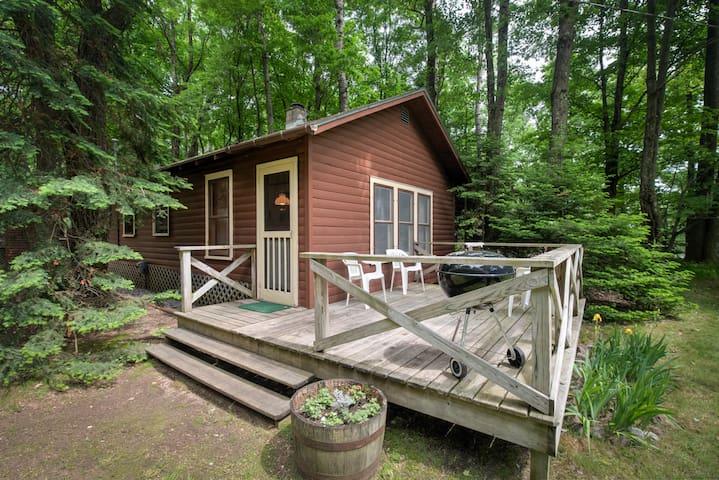 Comfy Cabin near the Lake