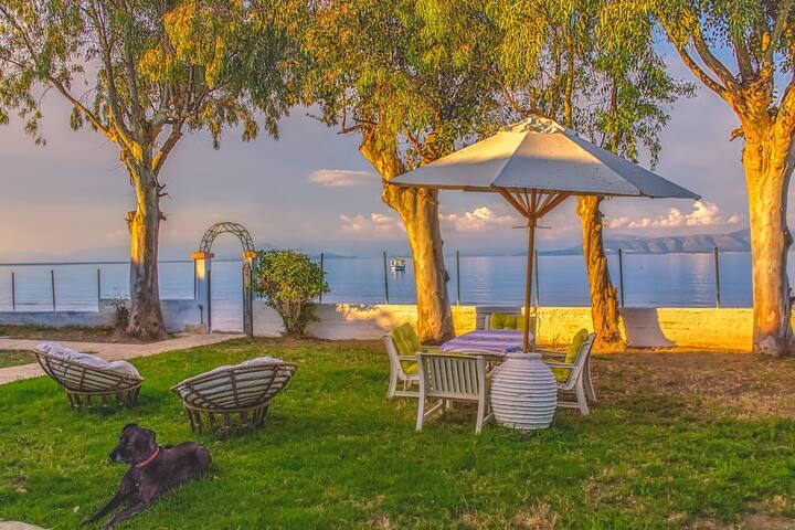 LeMaMi Beachfront Villa