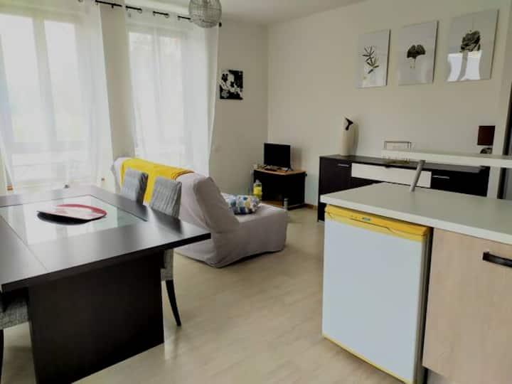Spacieux appartement calme 50m2
