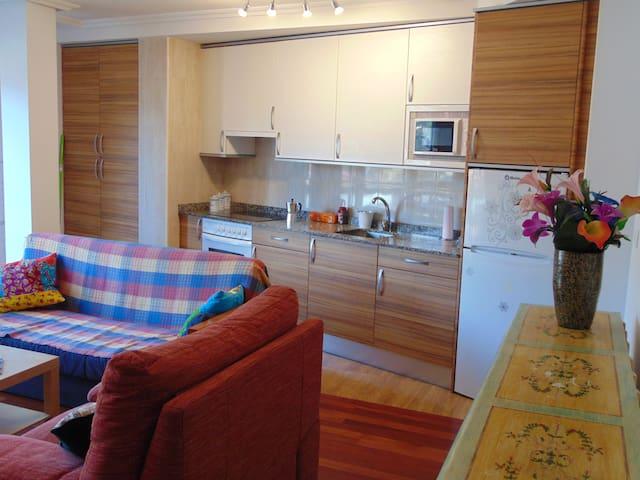 Apartamento centro Potes SEIN 2 (2-B)