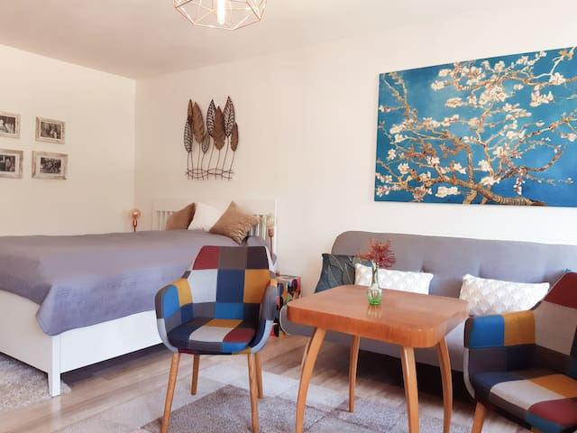 Main room/ obývací ložnice