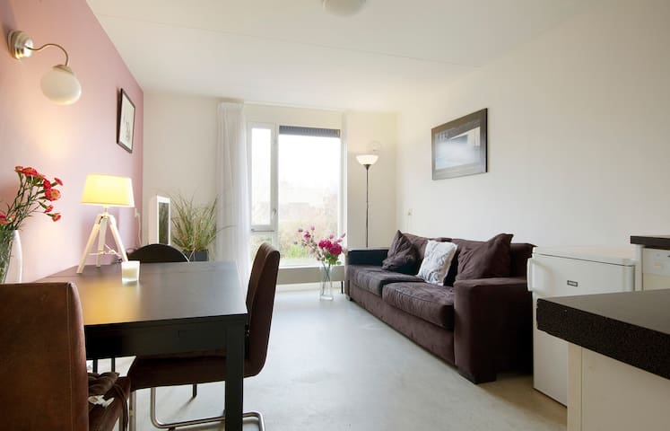 Comfort. appartment near centre with roofgarden - Amsterdam - Bed & Breakfast