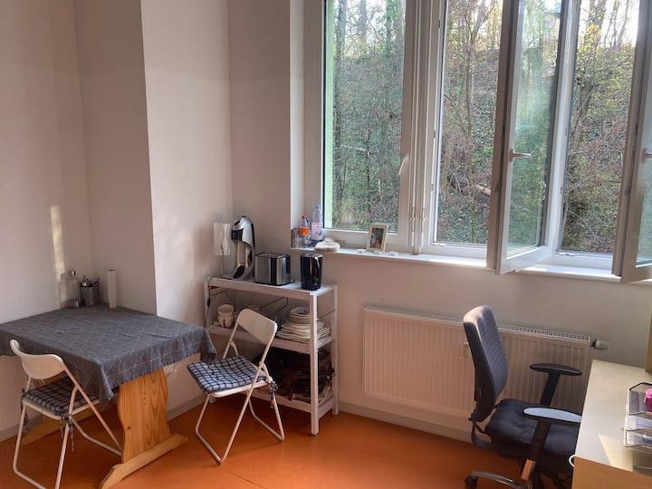 1-Zimmer Wohnung mit Loft