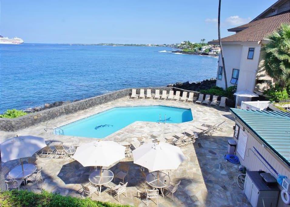 Ocean Front Complex Pool