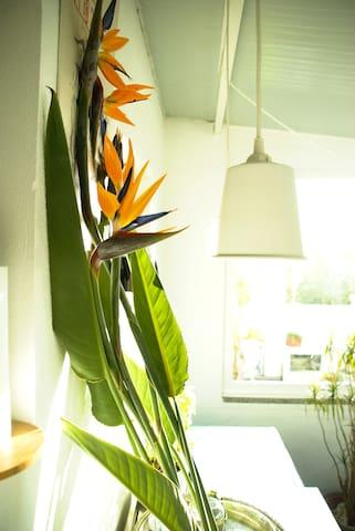 Flower House - Porto - Talo